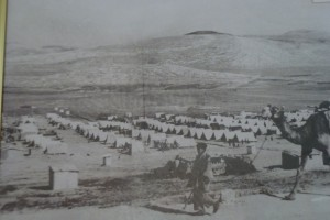 camp-de-balatahcc-139-300x200