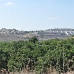 Au fond une colonie israélienne